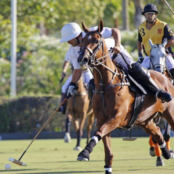 Santa María Polo Club (Copa Jerez de Polo)